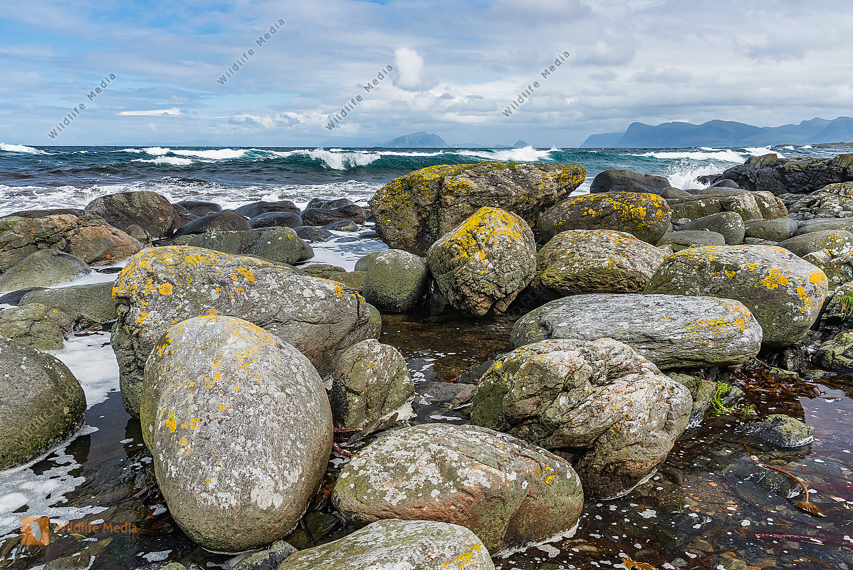 Küste auf Insel Runde Norwegen