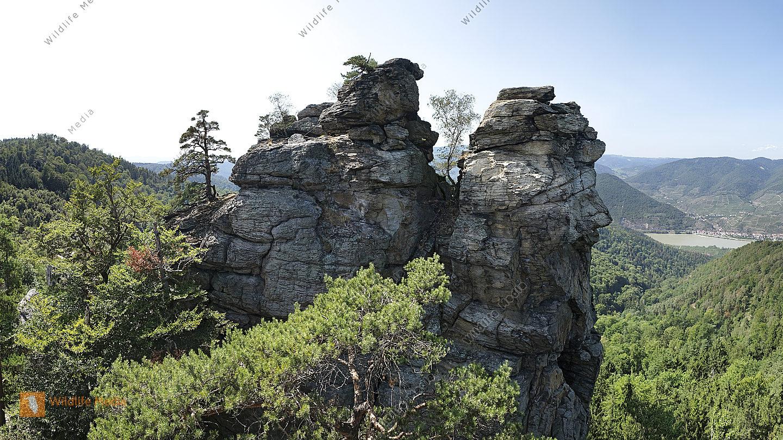 Hoher Stein Panorama