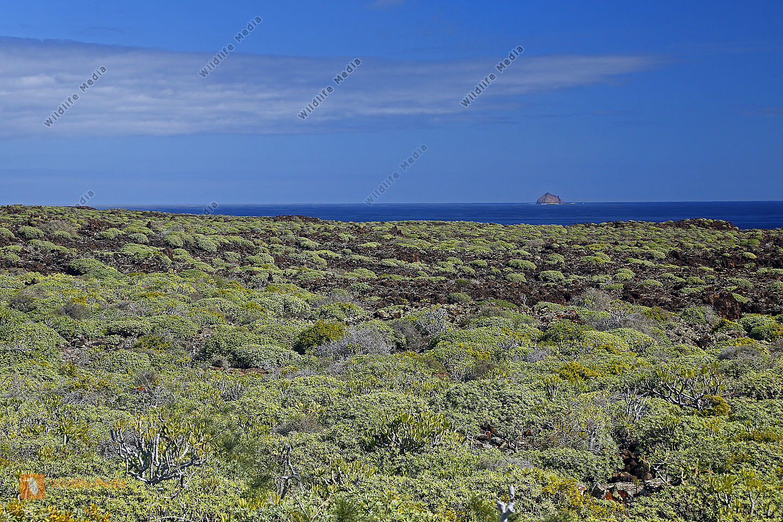 Landschaft auf Lanzarote