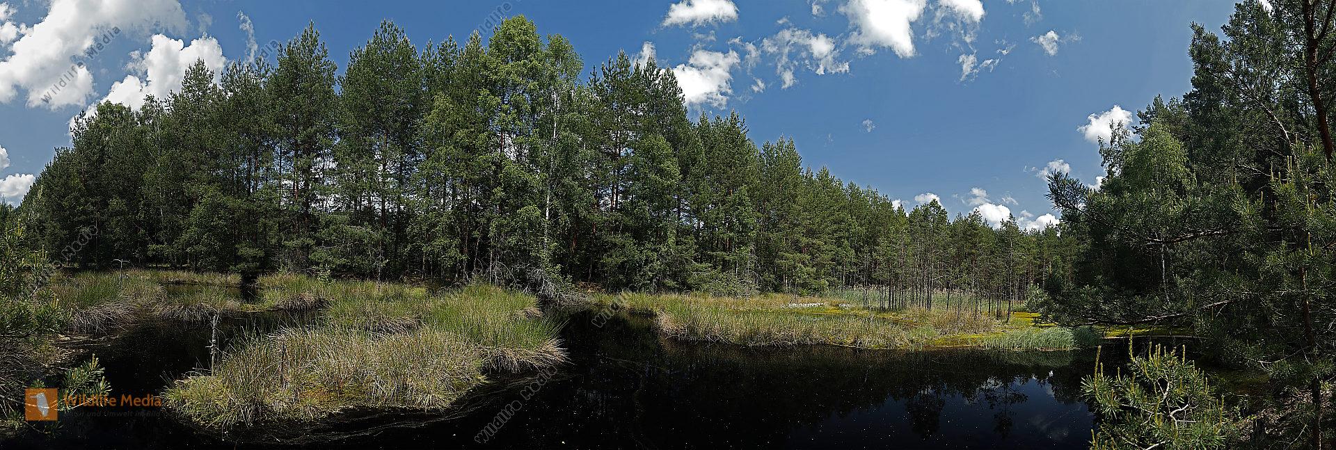 Schwarzes Moos Panorama