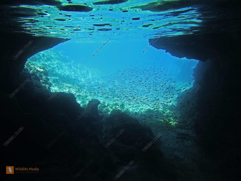 Küstenhöhle