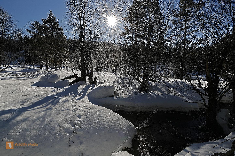 Steirisches Lassingbachtal im Winter