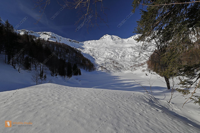 Große Bärwies im Winter