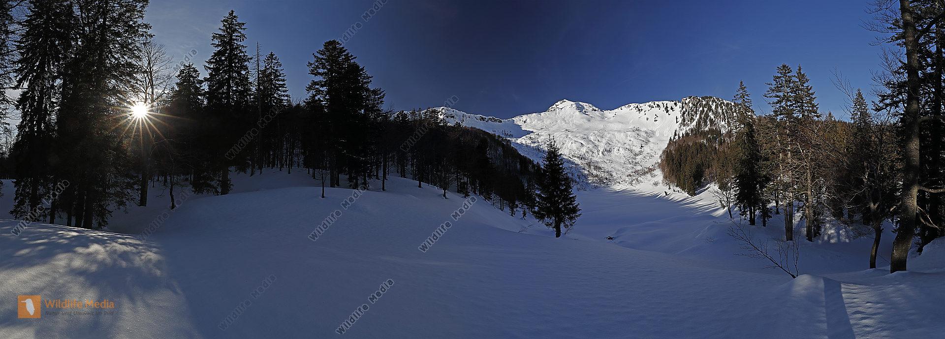 Dürrenstein mit Großer Bärwies Panorama
