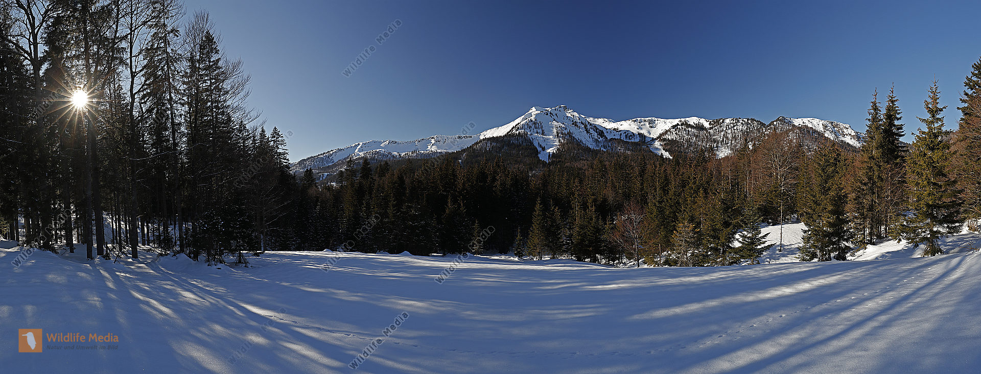 Dürrenstein Panorama