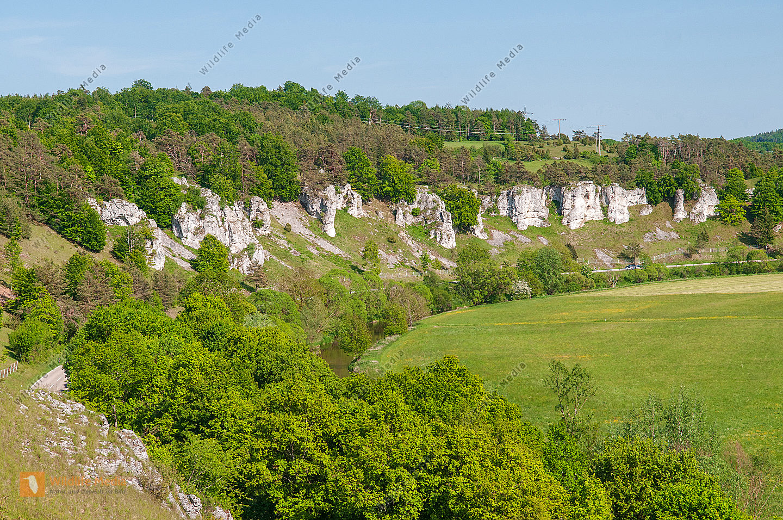 "Felsgruppe ""Zwölf Apostel"" im Naturpark altmühltal"