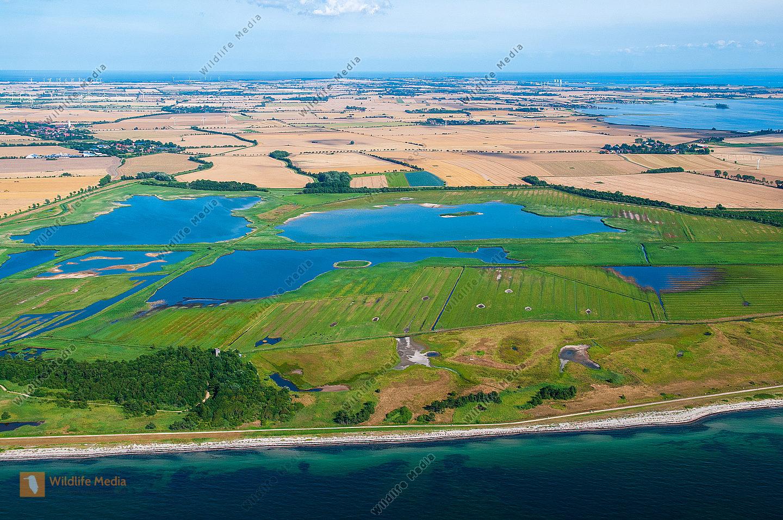 Luftbild vom Wasservogelreservat Wallnau/Insel Fehmarn Luftaufnahme