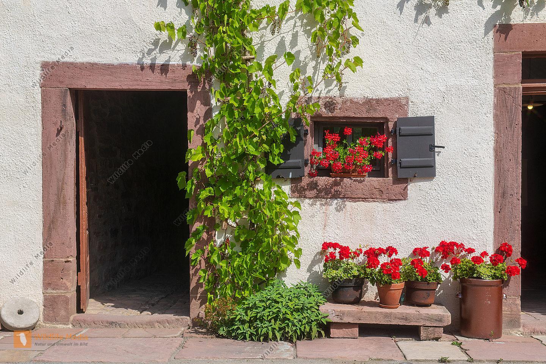 Eingang eines Bauernhauses
