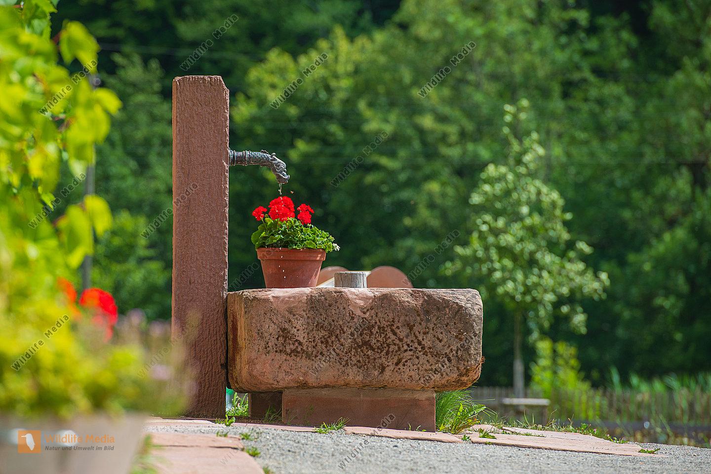 Brunnen vor einem Bauernhaus