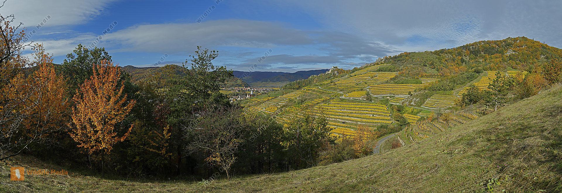 Wachau Dürnstein Herbst Panorama
