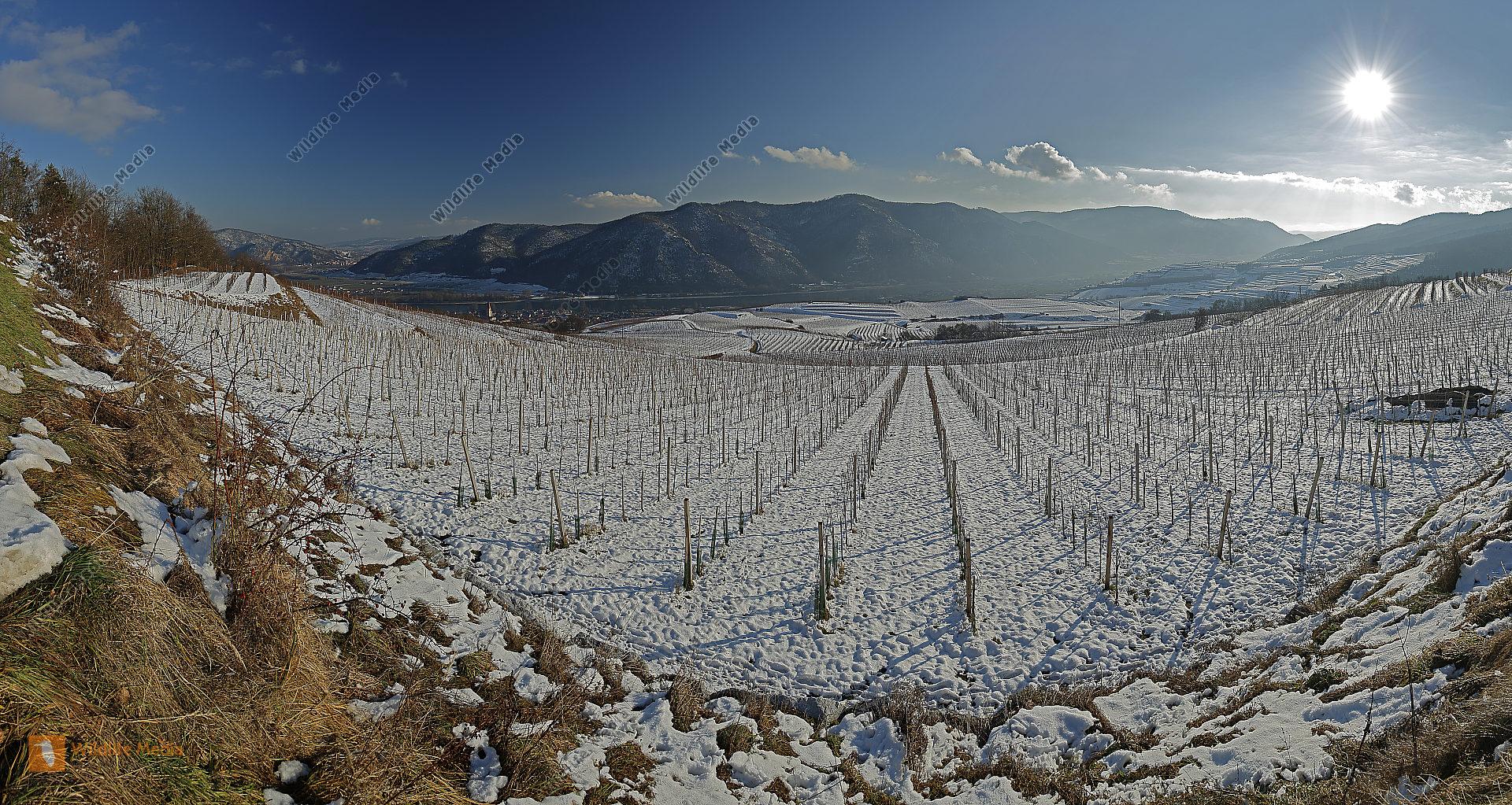 Wachau im Winter Panorama