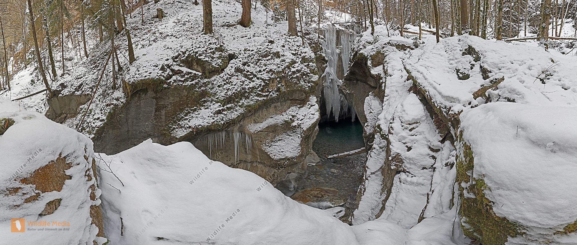 Taugler Strubklamm Winter Panorama